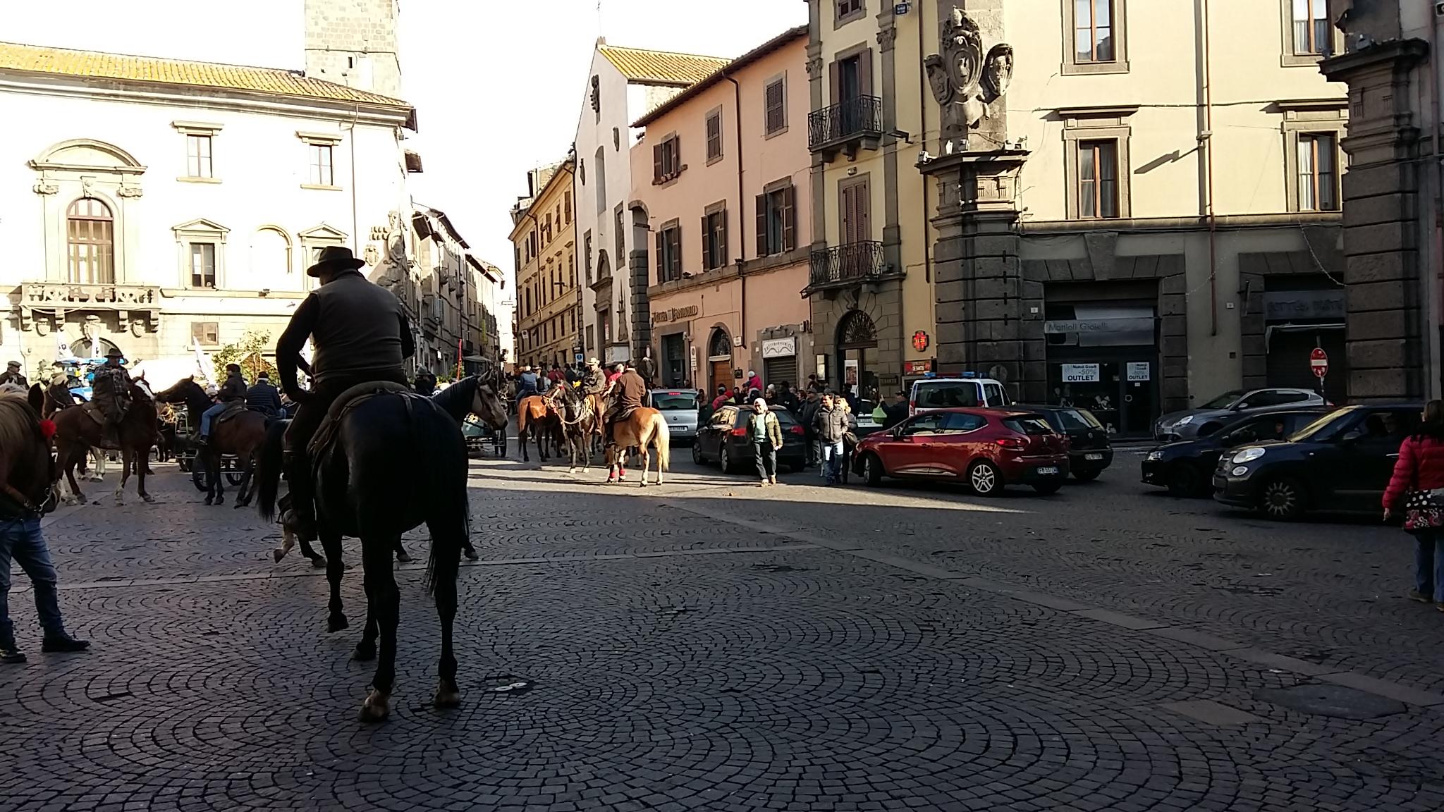Terra di nessuno senza regole: sfilano i cavalli a Piazza del Comune tra le auto in sosta vietata e il traffico