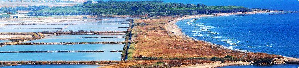 Percorsi extraurbani: le Saline di Tarquinia