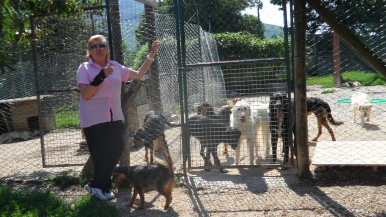 """Animalisti in lutto:  è scomparsa Elvia Viglino, """"amica degli animali"""", il ricordo di Paolo Felice: """"Il parco canile dovrebbe portare il suo nome"""""""
