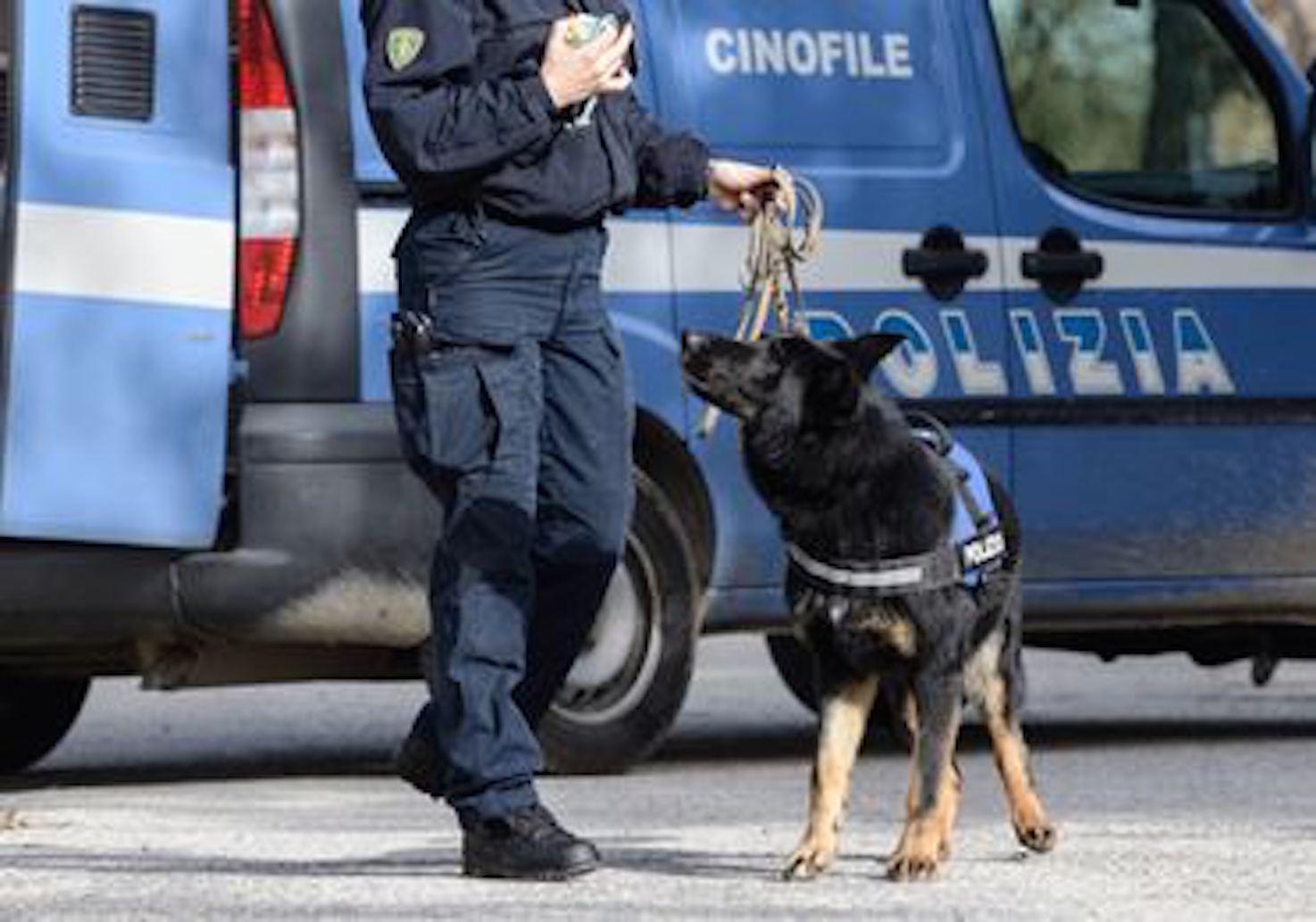 Viterbo, droga no stop in piena città: spacciava a Viale Trento, arrestato