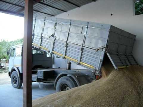 Montalto di Castro: incidente sulla strada Dogana, camion perde carico di grano