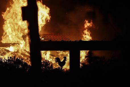 Atene tra le fiamme, almeno 54 morti per gli incendi e oltre 100 feriti