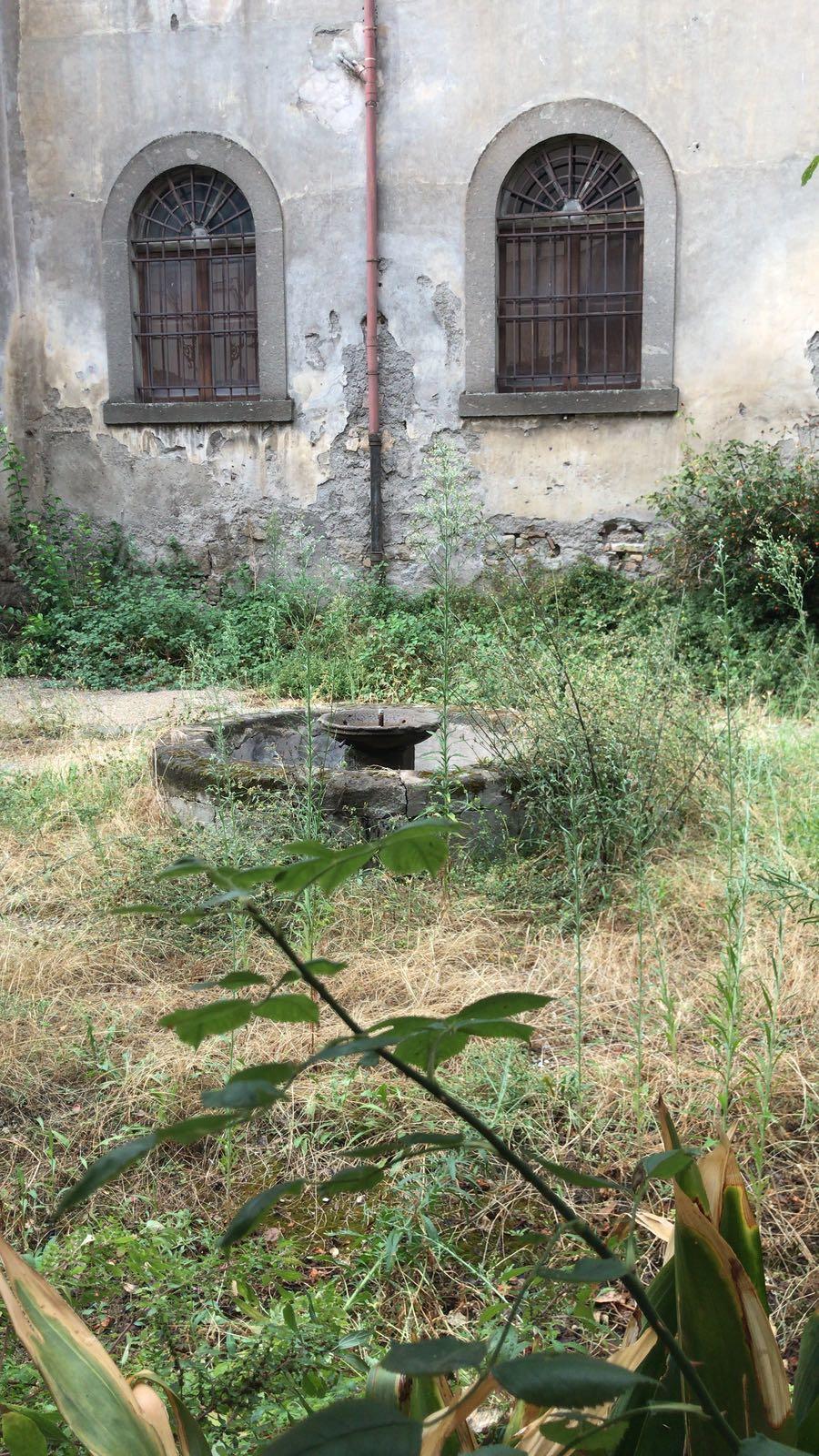 """Viterbo, """"annunci a Palazzo"""": Il Comune spende più di milione di  avanzi di bilancio, ma dimentica il taglio delle erbacce e le """"pulizie generali"""""""