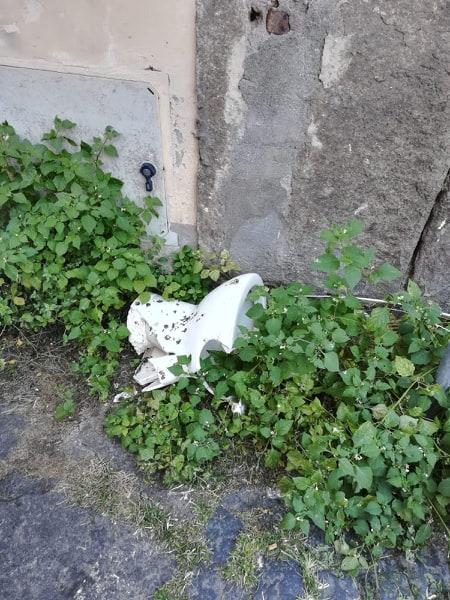 """Viterbo, sogni e """"bisogni"""": mancano i wc pubblici? Niente paura a Via Carletti trovi gratis il """"sollievo"""" nello splendore dell'erba incolta"""