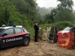 carabinieri campagna-3