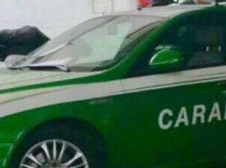 carabinieriforestale