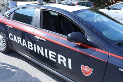 Roma, scoperto ristorante con cucine da incubo e cani maltrattati