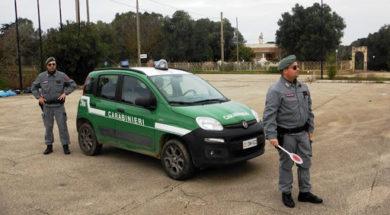 carabinieriforestali2