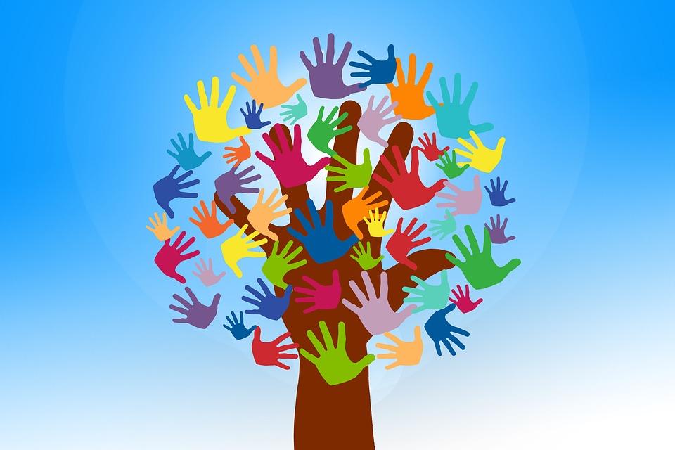 Viterbo, Comune, che la politica stia fuori dal mondo del volontariato è cosa buona giusta