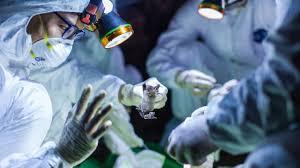 Coronavirus, quasi 10800 morti in Italia