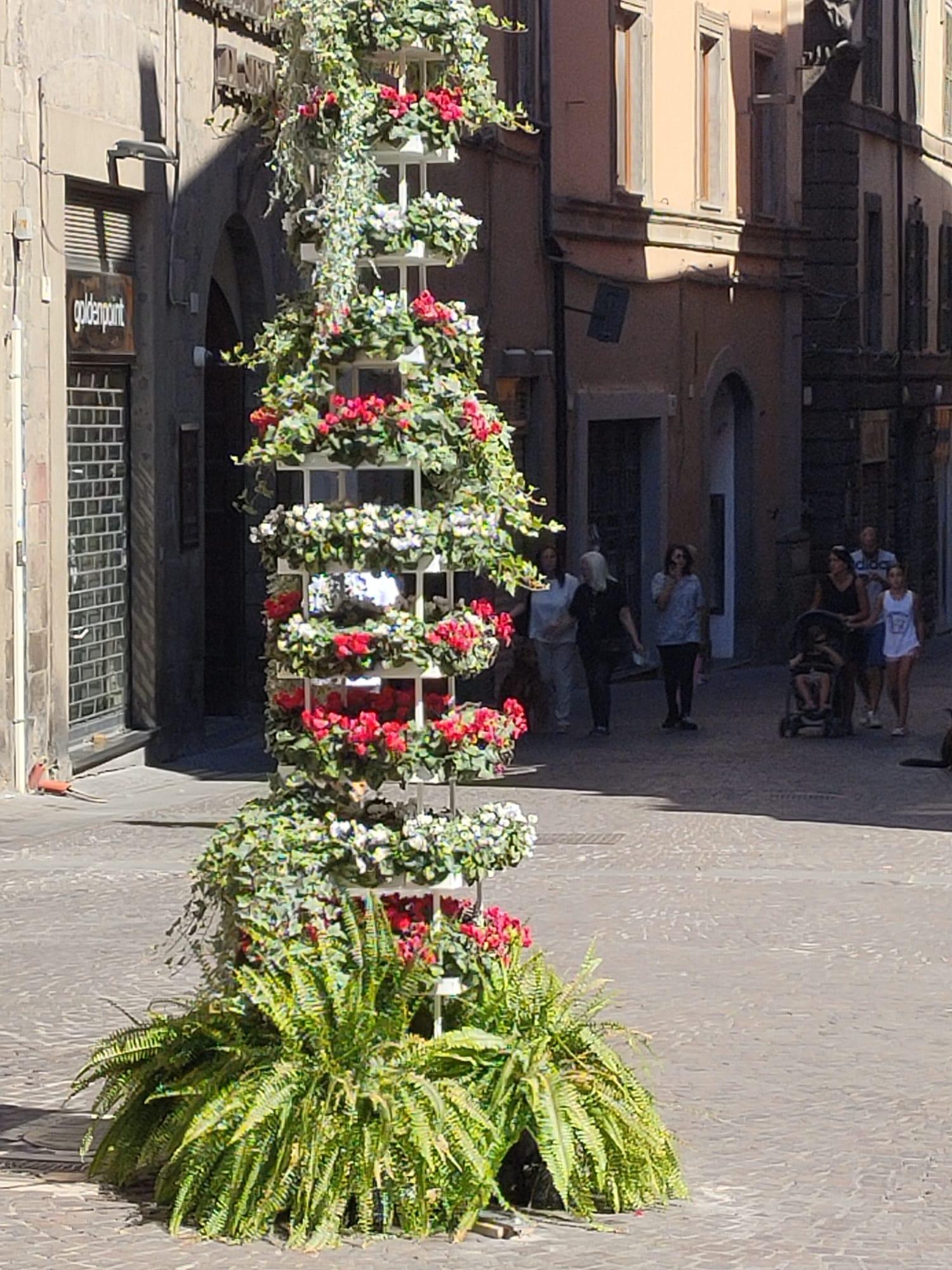 Viterbo, omaggio floreale a Santa Rosa senza rose, storie di kitsch suburbano
